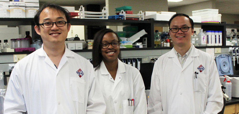 Chen lab group, left to right, Ze Lim, Ashley Tshala,  Jeffrey Chen (Photo: Trenna Brusky, VIDO InterVac)